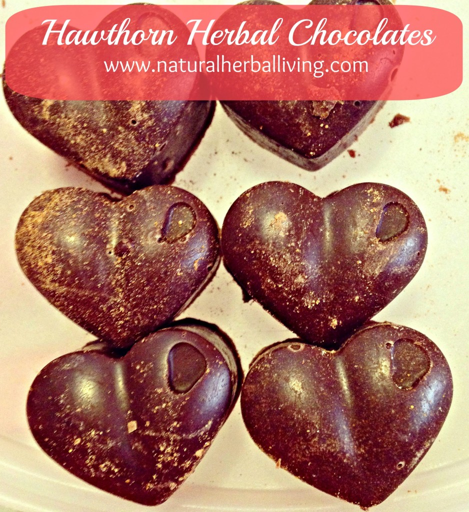 Heart Lovin' Herbal Chocolate – Hawthorn Recipe