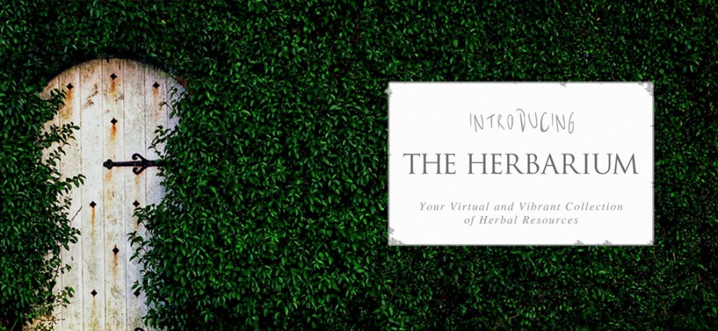 Introducing the The Herbarium