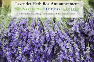 Lavender Herb Box Announcement