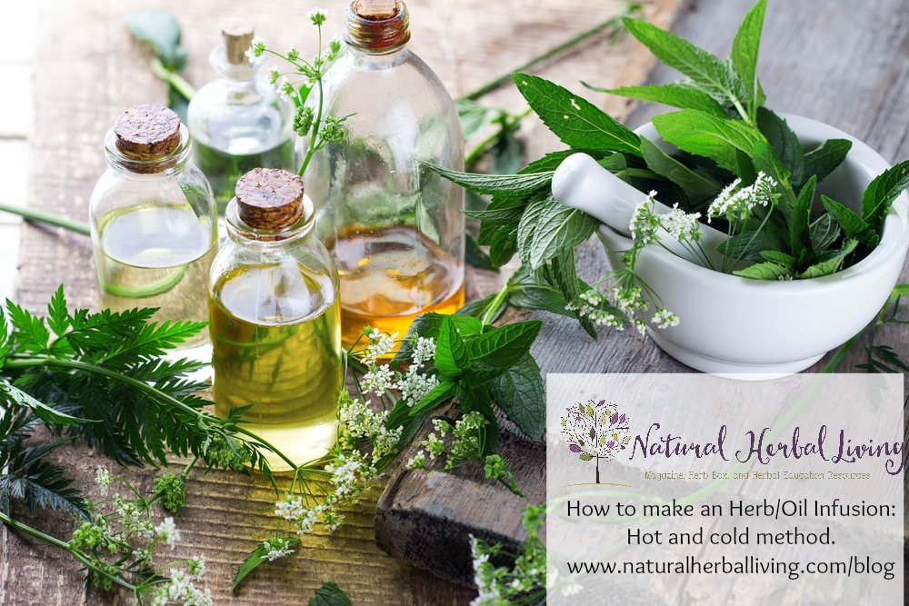 How to infuse herbs into oil: Hot and Cold Method