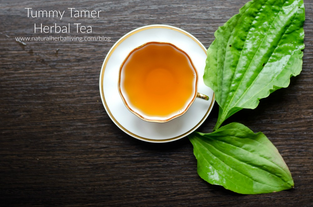Tummy Tamer Herbal Tea