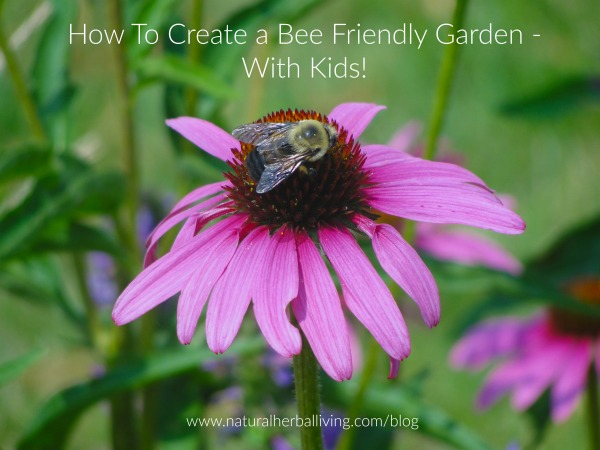 How to Plant a Bee Friendly Garden With Kids
